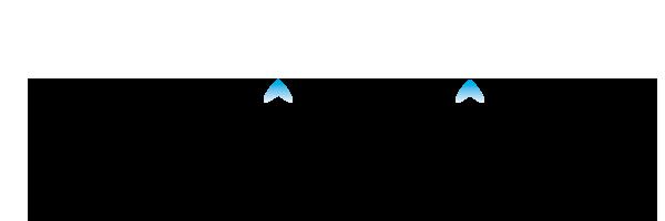 logo broil king